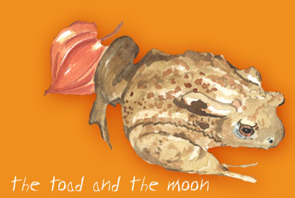 the toad and the moon
